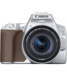 CANON EOS 250D+18-55 IS STM ARGENT